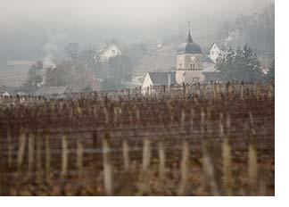 2018 Burgundy primeurs trip