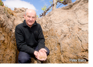 Peter Barry