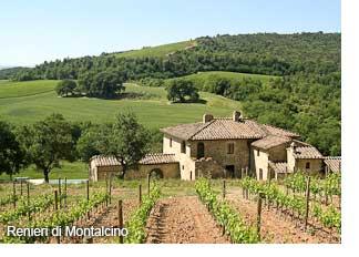 Renieri di Montalcino