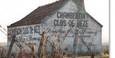 2010 Burgundy en primeur: Gevrey-Chambertin