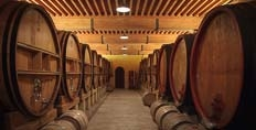The barrel cellar at Vieux Telegraphe
