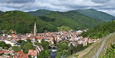 The village of Rangen seen from the vineyards of Zind Humbrecht