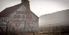 2012 Burgundy: Gevrey-Chambertin