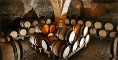Dugat-Py cellars
