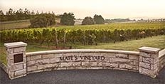 Kumeu Mate's Vineyard