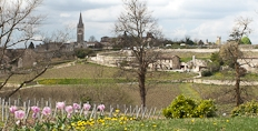 St Emilion seen from Pavie Macquin