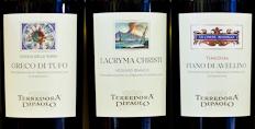 Terredora and the extraordinary indigenous grapes of Campania