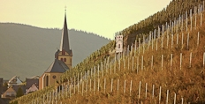 Zeltingen from the Sonnenuhr vineyard