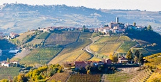 Castiglione, surrounded by the vineyards of Barolo